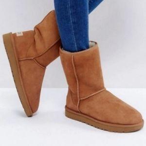 Ugg Classic Short Chestnut Boots 6